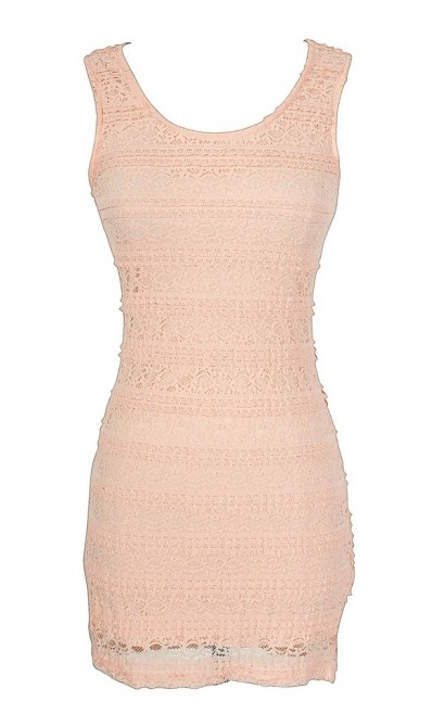 Basic Beauty Fitted Lace Dress in Pink