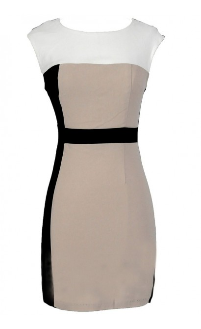 Neutral Territory Colorblock Pencil Dress