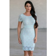 Bygone Era Lace Pencil Dress in Mint/Beige
