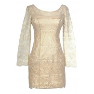 Golden Wishes Lace Overlay Designer Dress