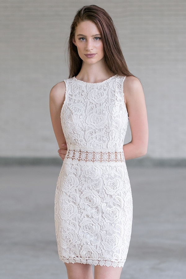 See It Through Fitted Sheath Dress In Ivory