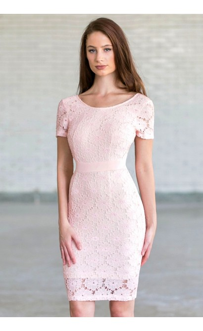 Bygone Era Lace Pencil Dress in Pale Pink/Beige