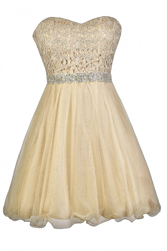 Golden Glow Lace And Tulle Embellished Party Dress
