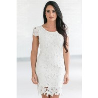 Calyn Crochet Lace Capsleeve Pencil Dress in Ivory