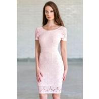 Bygone Era Lace Pencil Dress in Pale Pink/Beige