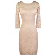 Pink Lace Dress, Lace Pencil Dress, Cute Lace Dress